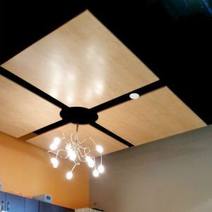 Acoustical Surfaces, Inc. image | Acoustical Surfaces, Inc.