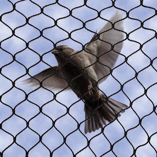 Building Product: No Knot Bird Netting - [10203b8] | ARCAT