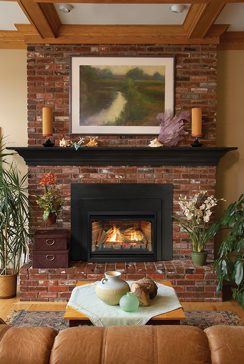 Direct-Vent Fireplace Insert - Loft Contemporary