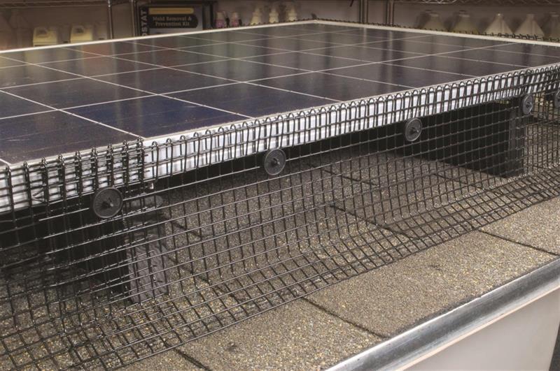 Solar Panel Bird & Pest Exclusion