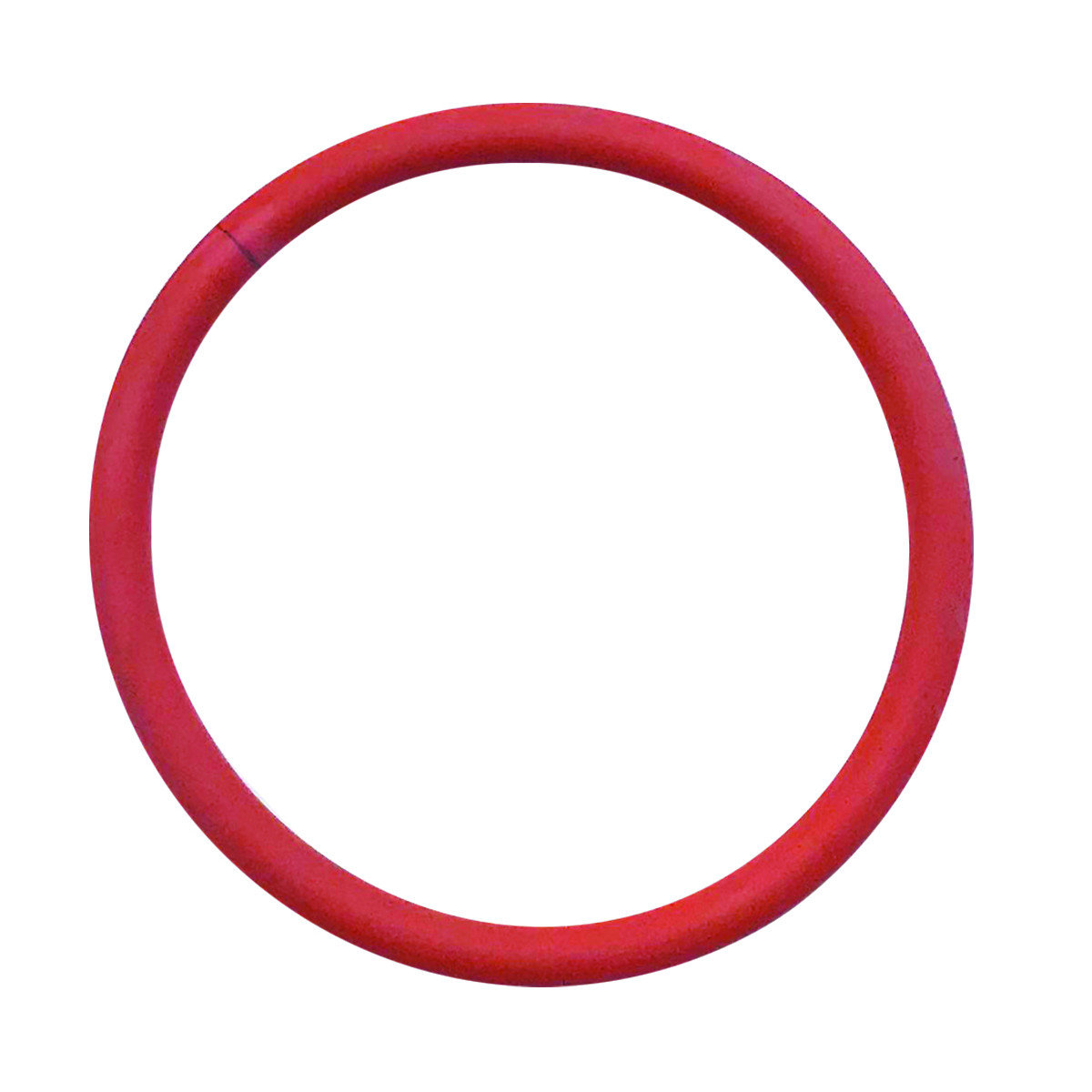 O-Ring Silicone