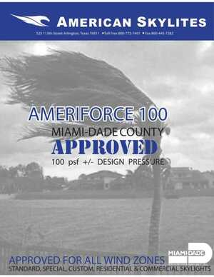 <!-- 015 -->AMERIFORCE 100