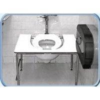 Standard Toilet Transfer image