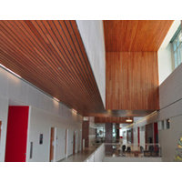 Linear Wood Ceilings image