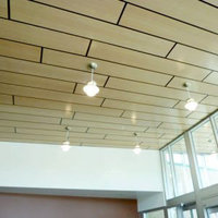 Fusion Perforated or Non-Perforated Ceiling & Wall Panels image
