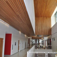 Linear Ceilings & Walls image