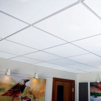 Microperf Metal Ceiling Tiles image
