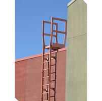 Exterior Roof Access Ladders  image