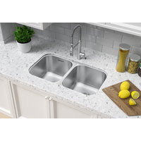 ADA Compliant, Double Bowl Undermount Economy Stainless Steel Kitchen Sink image
