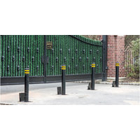 Retractable Manual Bollards image