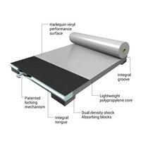 Harlequin AeroDeck® Sprung Floor Panels image