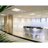 Solare Full Height Single Glazed Frameless Partitions image