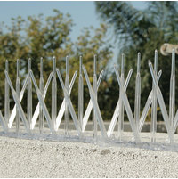 Plastic Bird Spikes image