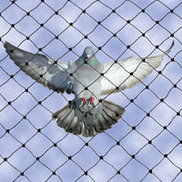 Heavy Duty Bird Netting  image