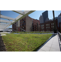 Roof Garden Systems image