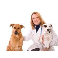 Veterinary Clinic  image