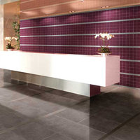 Wall & Counter Glazed Tile image