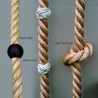 Gym Climbing Ropes image