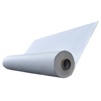 KEE-Containing Duro-Last® EV Roofing Membrane  image