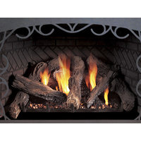 Direct-Vent Fireplace Insert - Innsbrook Traditional image