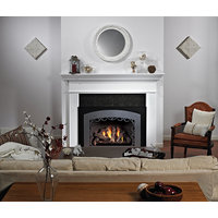 Direct-Vent Fireplace Insert - Loft Contemporary Luxury image