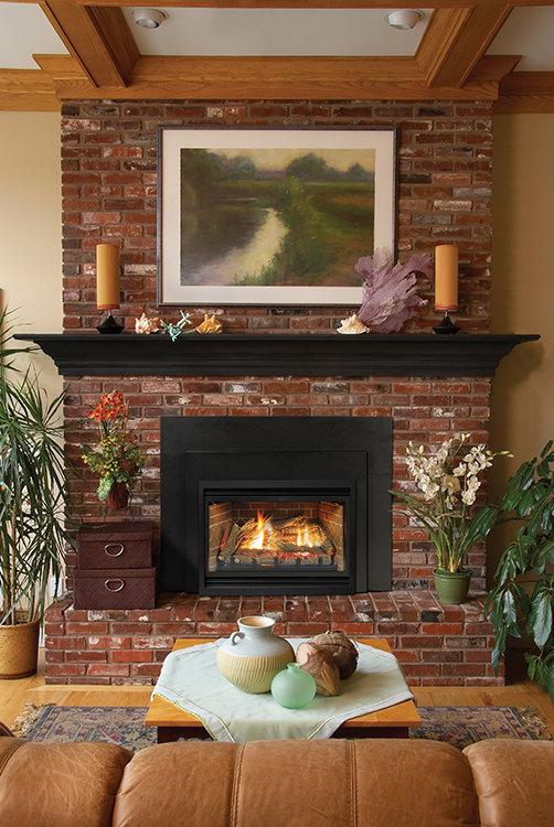 Direct-Vent Fireplace Insert - Loft Contemporary