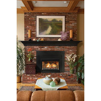 Direct-Vent Fireplace Insert - Loft Contemporary  image