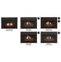 Direct-Vent Fireplace Insert - Innsbrook Traditional Luxury image