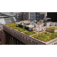 Roof Garden Walkway image