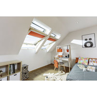 Centre Pivot Roof Window image