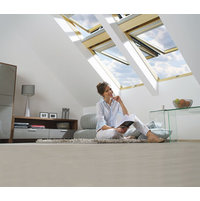 Top Hung and Pivot Roof Window image