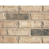 Thin Brick Collection image