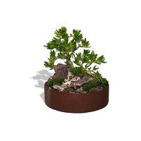 Mataro Shallow Succulent Planter image
