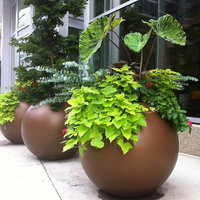 Globe Indoor and Outdoor Planter Pot image