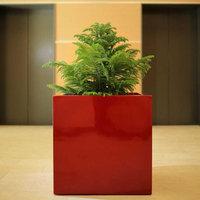 Montroy Cube Fiberglass Planters image