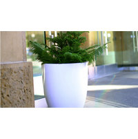 Fiberglass Planters image