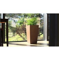 Indoor Planters image