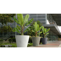 Commercial Planters image
