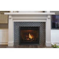 Gas Fireplace - Traditional image