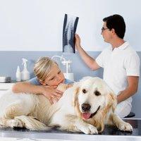 Miele Professional image | Veterinary/Animal Facilities