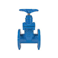 GV-FXF-NRS Flanged by Flanged NRS Gate Valve image