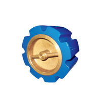 WSCV Water Silent Check Valve Class 125 image