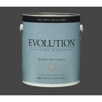 EVOLUTION® Paint Satin Finish image