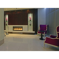 C 420 Commercial Single Sided Custom Gas Fireplace  image