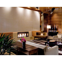 C 320 Commercial Single Sided Custom Gas Fireplace image