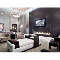 C720 Commercial Single Sided Custom Gas Fireplace image
