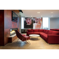 C620 – ST Commercial See Through Custom Gas Fireplace image