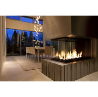 C420-PFC Commercial Peninsula Custom Gas Fireplace  image
