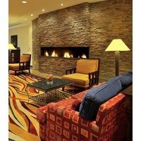 Gas Fireplace - Custom Commercial - 5ft Modern Bay image