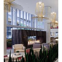 Gas Fireplace - Custom Commercial - 10ft Modern See Through image